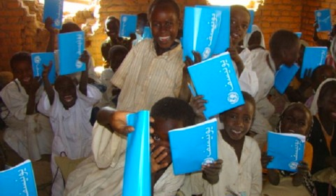 Health and education in Darfur